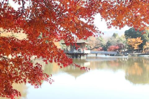 奈良ペディア