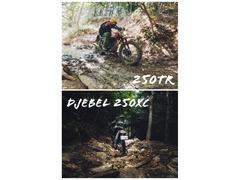 初心者のジェベルと250TRでちょっとハードな林道行ってみた