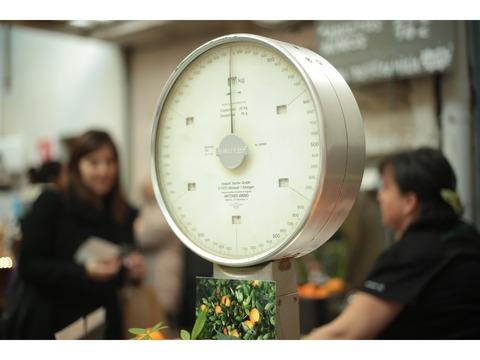 どんな有名人の体型かを教えてくれる体重計