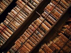 天井一面の本棚