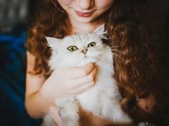 ネコと一緒に遊べるネズミタタキ