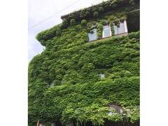 木津駅付近にある面白い建物