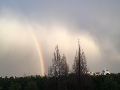 虹をみた!